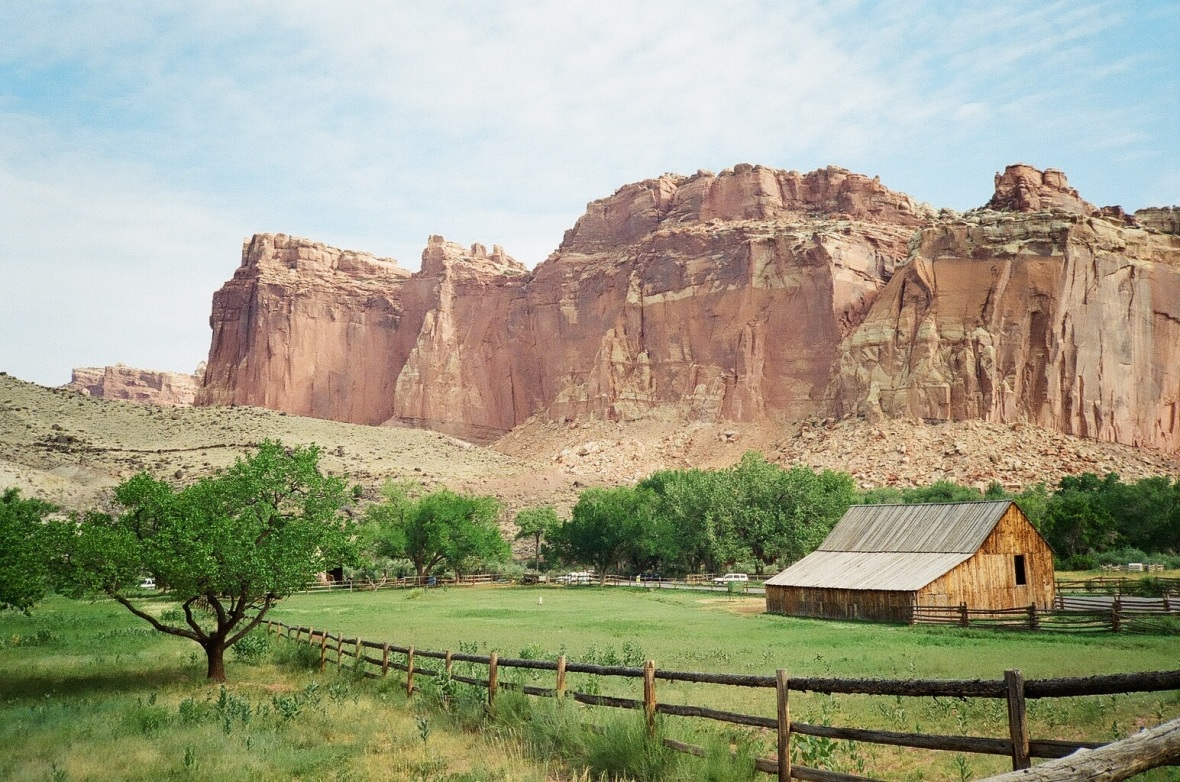 35mm film photograph of Fruita Orchard in Capitol Reef National Park, Utah