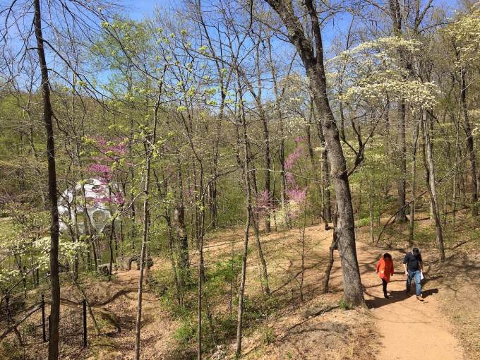 Woodland hiking trails and Fly's Eye Dome at Crystal Bridges Museum of American Art in Bentonville, Arkansas