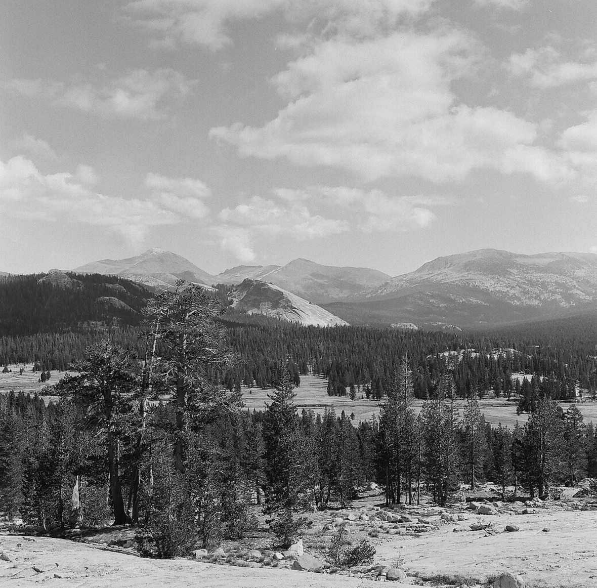 Medium format 120 mm monochrome film photography Tuolumne Meadows and Granite peaks Yosemite National Park