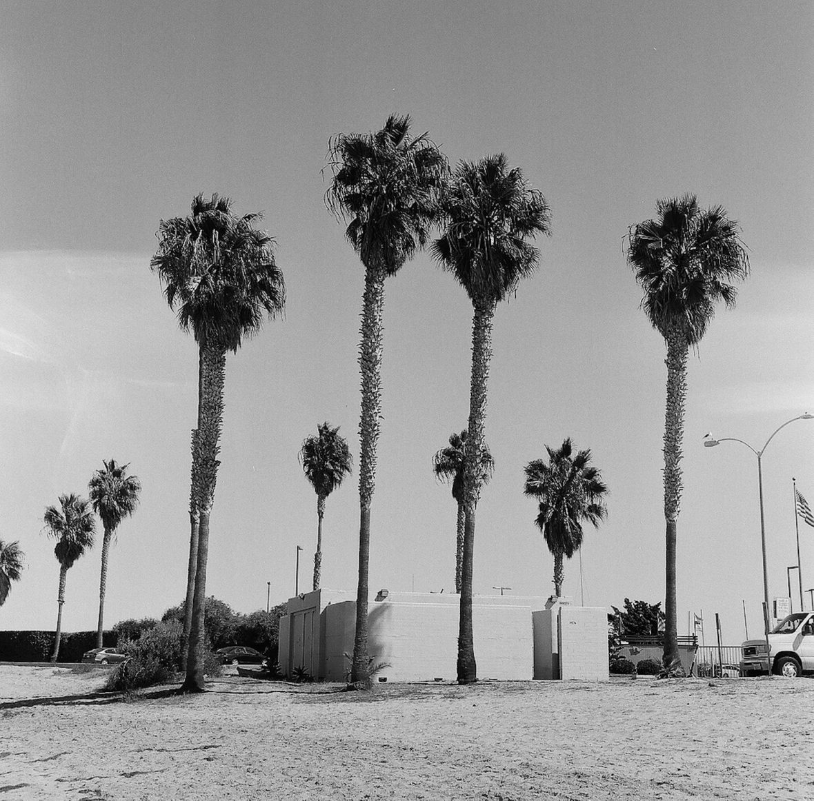 Medium format 120 mm monochrome film photography Brutalist architecture and palm trees in Mission Bay, San Diego California