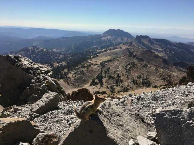 Sharing the Lassen Peak trail with chipmunks in Lassen Volcanic National Park