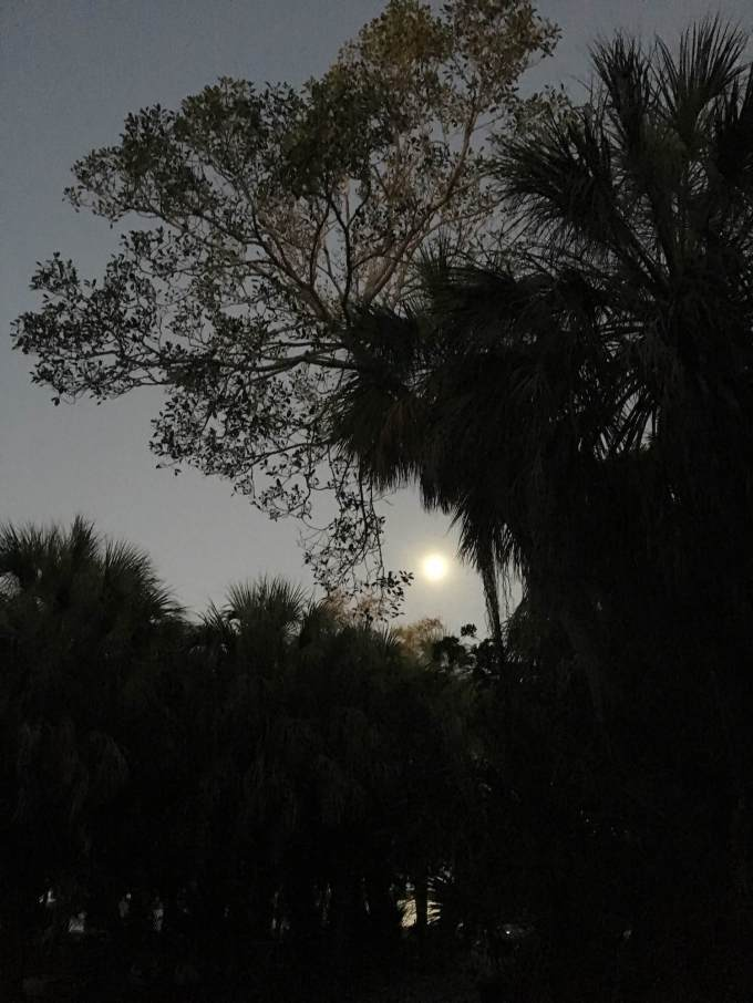 Total Supermoon Blood Moon Eclipse moon rising over Fort De Soto Park