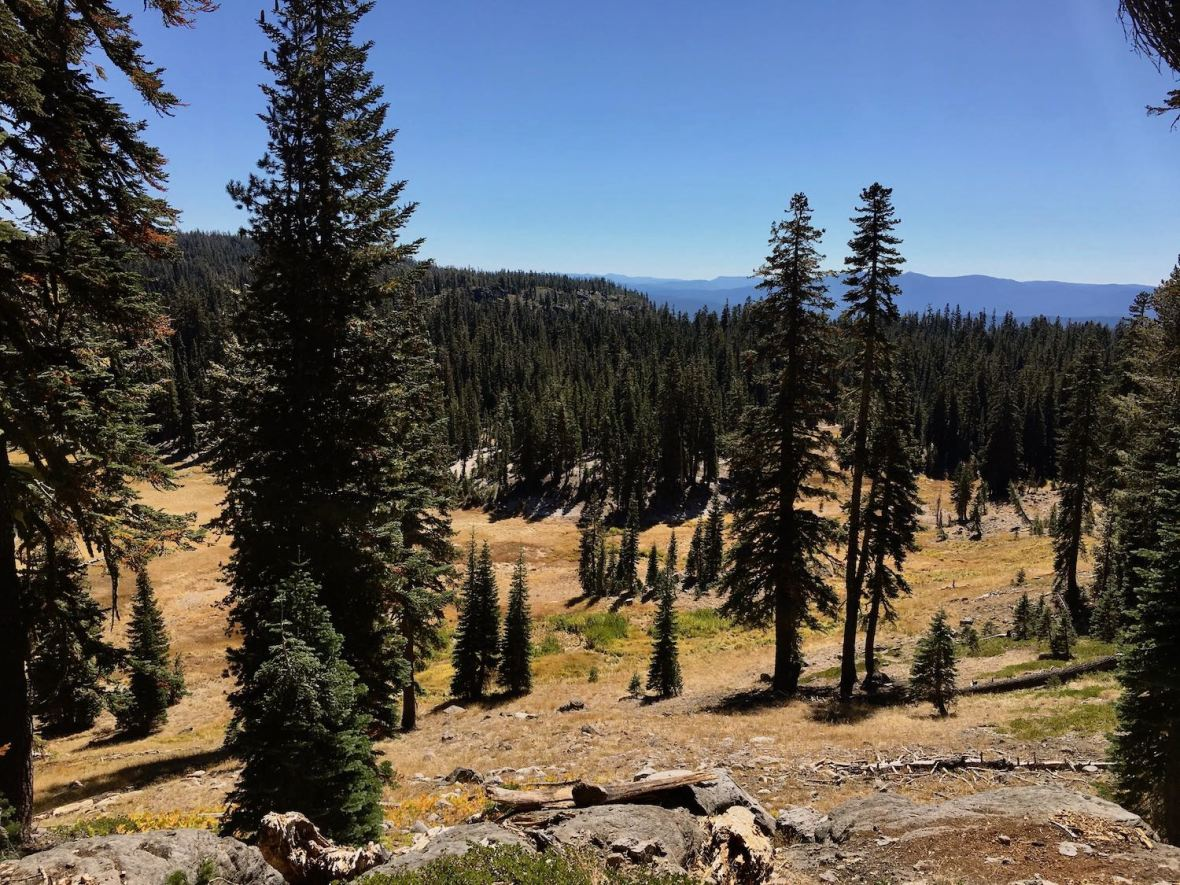 Mountain, meadow, and forest views from Bumpass Hell trail in Lassen Volcanic National Park