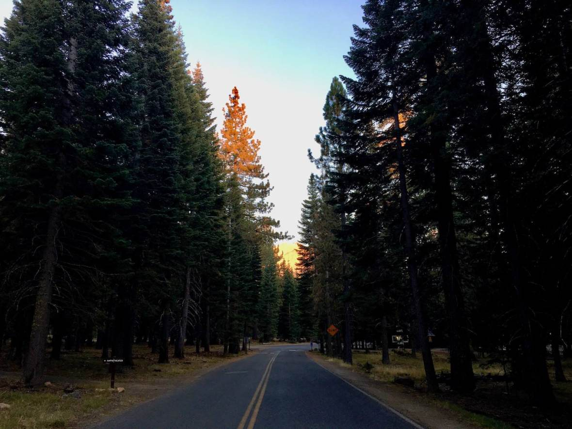 Lassen Peak glowing gold at sunset, viewed from the road to Manzanita Creek campground in Lassen Volcanic National Park