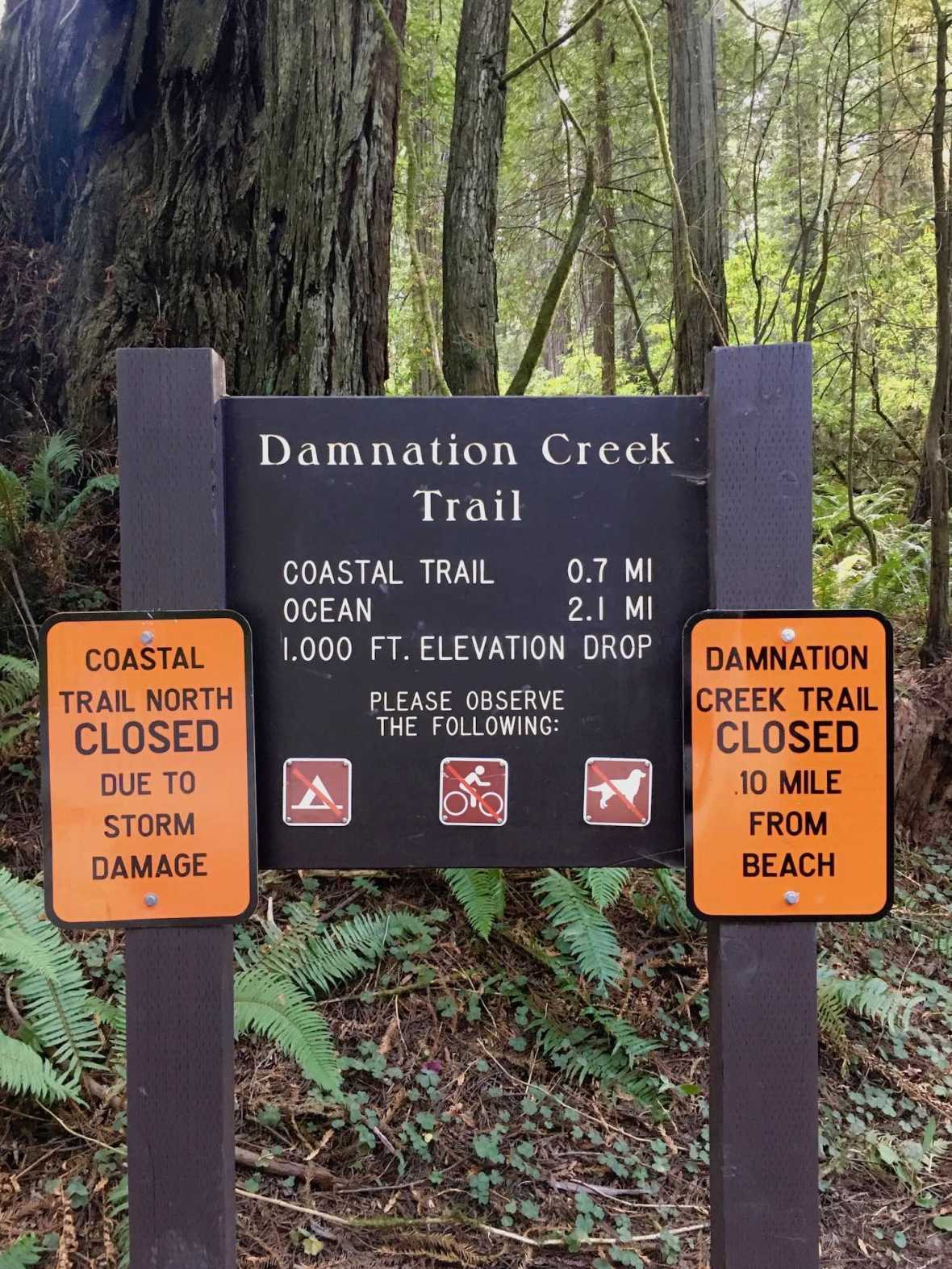 Damnation Creek Trailhead in Del Norte Coast Redwoods State Park