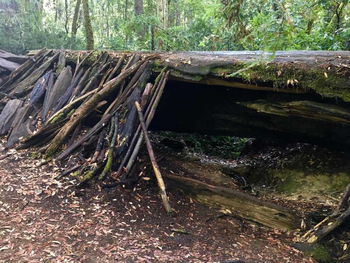 Hermit Hut in California's Hendy Woods State Park