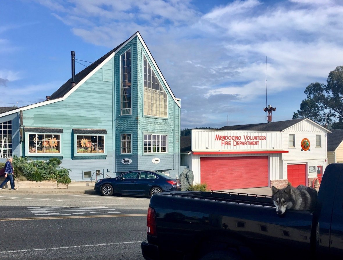 Volunteer Fire Department and Husky dog in the back of a truck in Mendocino, California