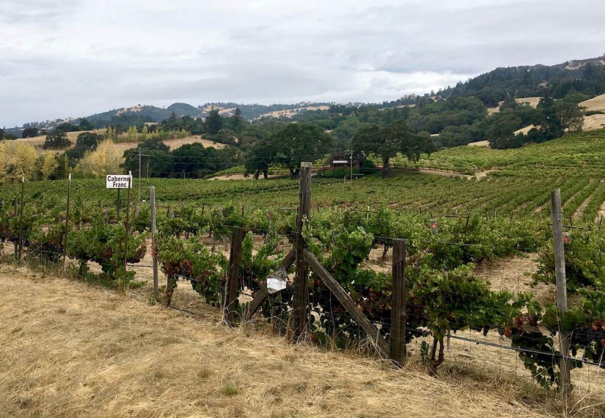 Anderson Valley winery, California