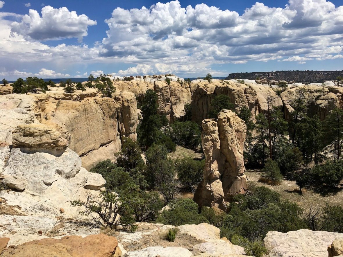 The Headland Trail in El Morro National Monument
