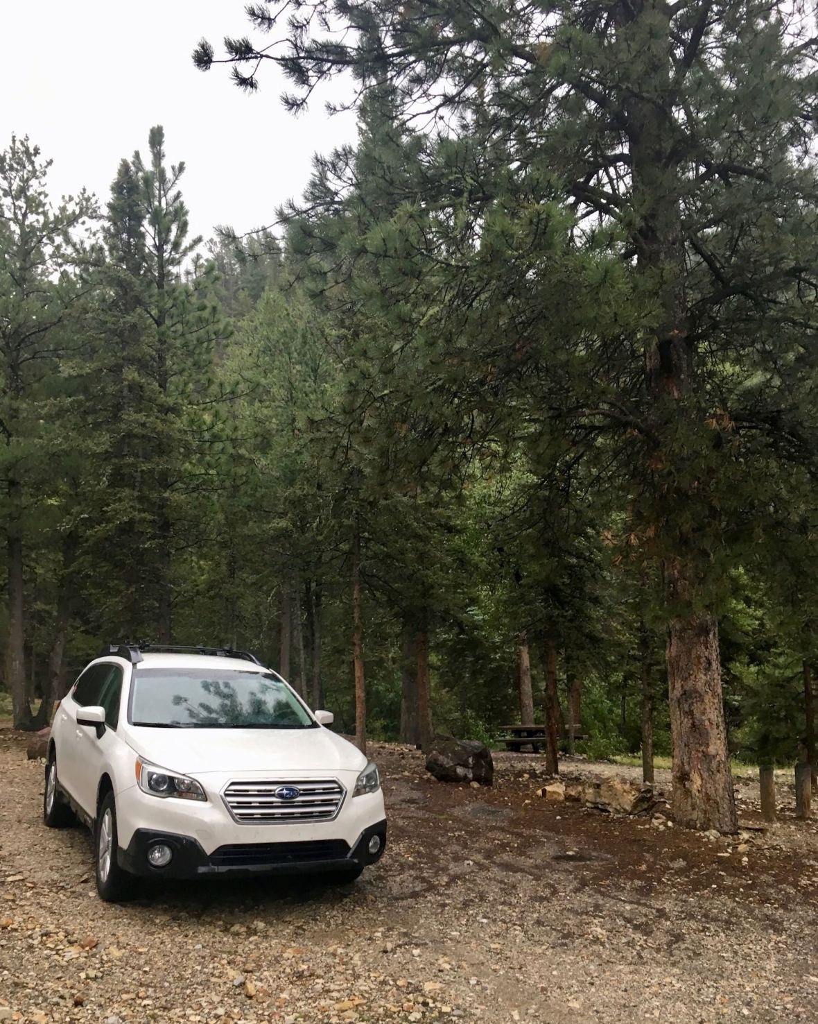 Carson National Forest Campground near Red River, New Mexico