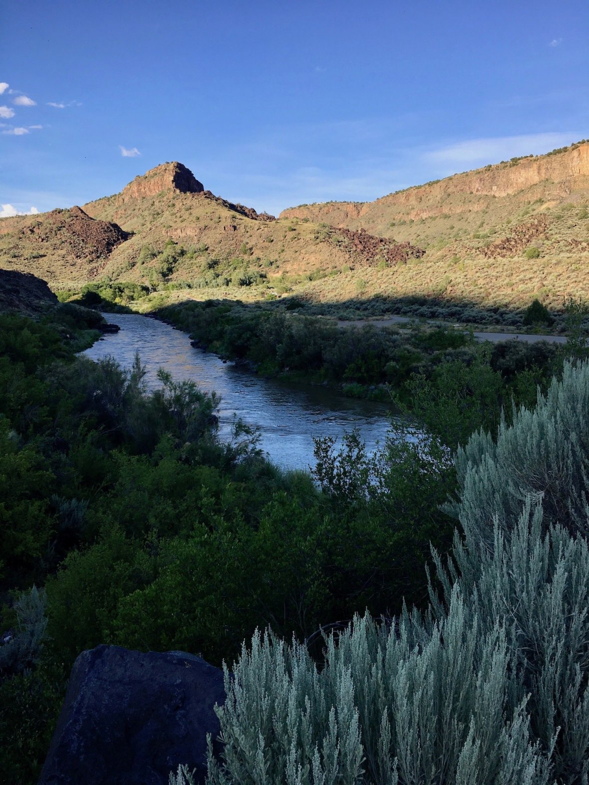Through the sage, the Rio Grande in Orilla Verde Recreation Area
