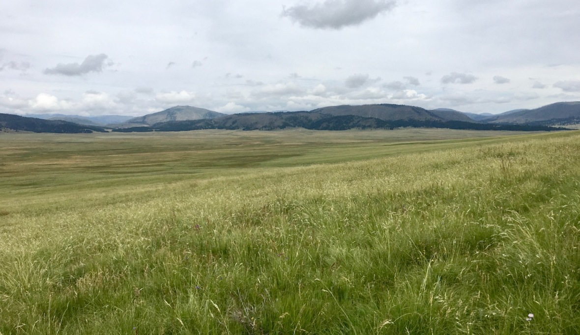 Valle Grande in Valle Caldera National Preserve, northern New Mexico