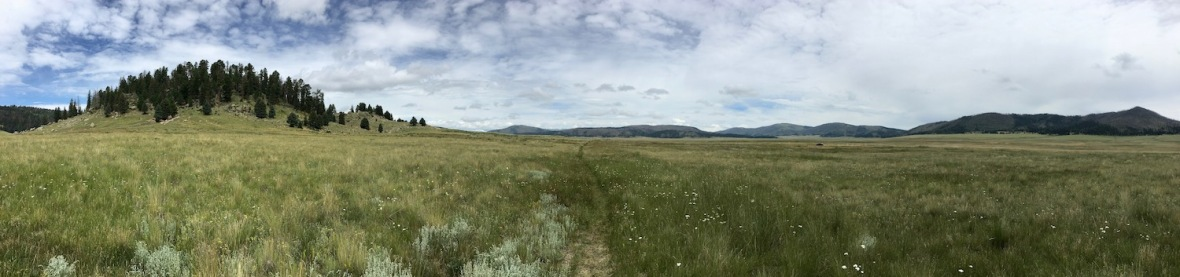 Panorama of Valle Grande in Valle Caldera National Preserve