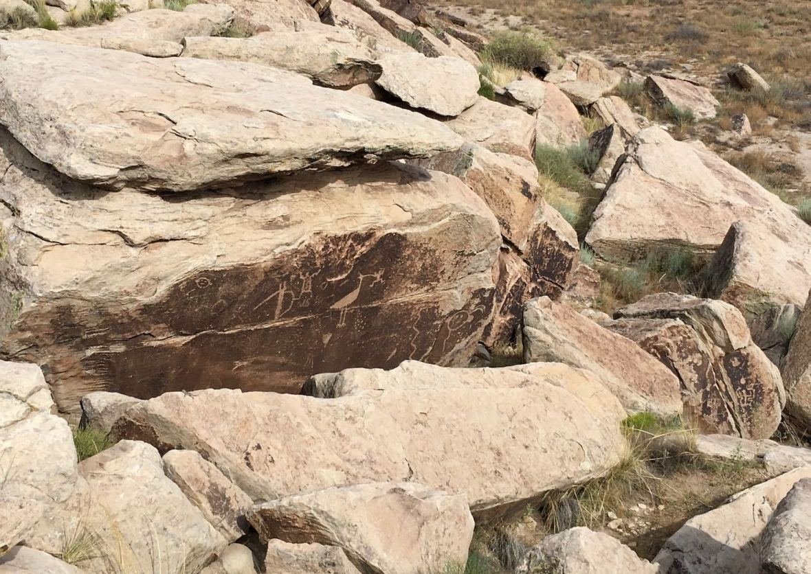 Petroglyphs at Puerco Pueblo in Petrified Forest National Park