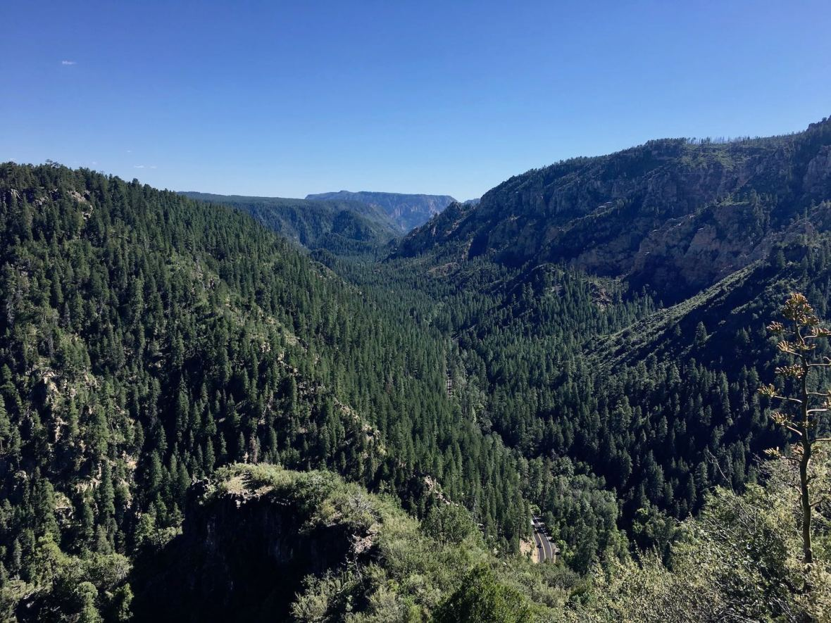 Oak Creek Vista of Coconino National Forest